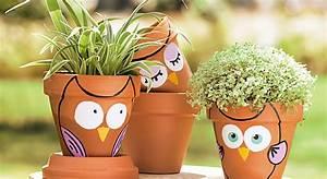 Pot De Fleur En Terre Cuite : peinture des chouettes pots de fleurs prima ~ Premium-room.com Idées de Décoration