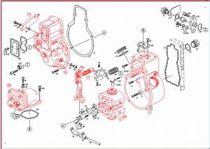 P- Pump Parts Diagram - Dodge Diesel