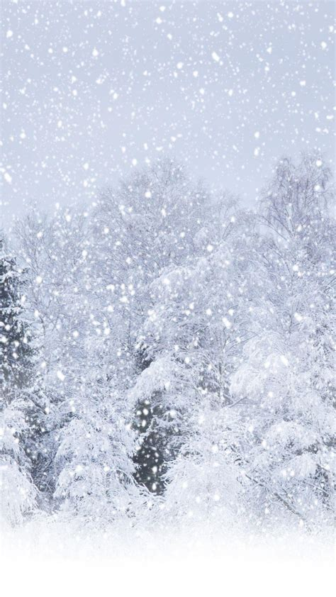 heavy snow forest iphone   hd wallpaper hd