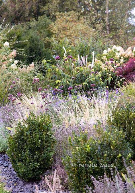 Lavendel Und Gräser by Lavendel Gr 228 Ser Hortensie Bux Eisenkraut Garden Garten