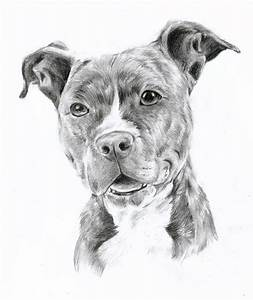 drawing pit bulls | Pitbull by oOChErRyThEbErRyOo | Clip ...