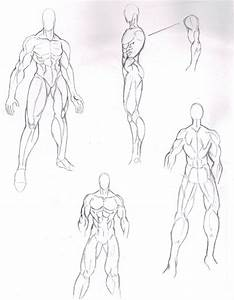 MANGA MALE BODY STRUCTURE by tiffawolf on DeviantArt