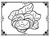 Lettuce Coloring Face Template sketch template