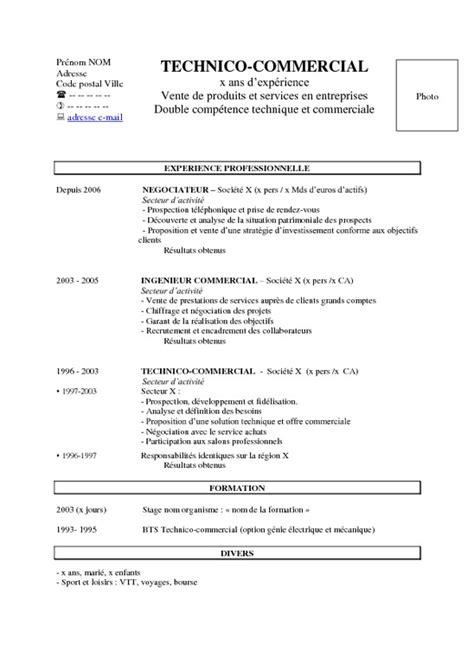 Un Resume In by Exemple D Un Cv Pdf