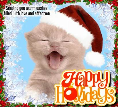 Happy Holiday Ecards Holidays Cards Merry Cat