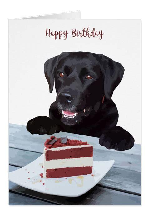 black lab birthday card dog birthday card zazzlecom