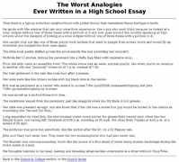 why i want to be a nurse essay sample