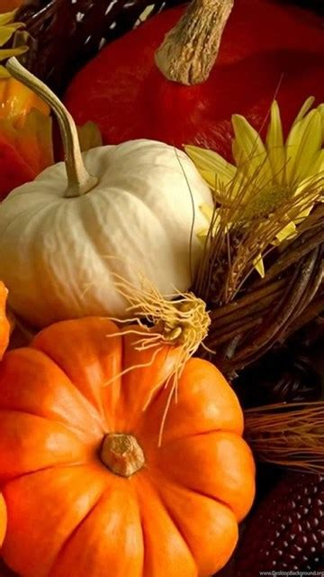 Thanksgiving Free Wallpaper And Screensavers by Thanksgiving Wallpapers And Screensavers Desktop Background