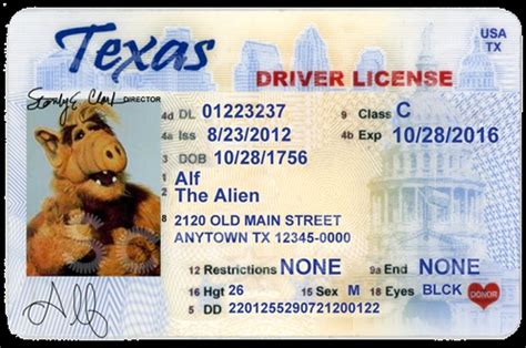 Texas Driver's License Editable Psd Template Download