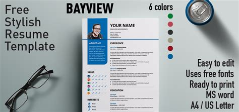 Free Stylish Resume Templates Word by Bayview Stylish Resume Template