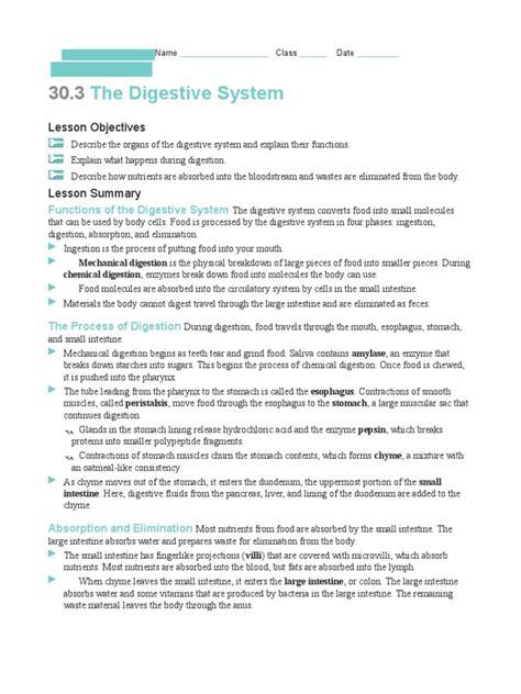digestive system worksheet  digestion human