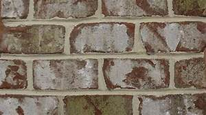 Oyster Bay Closure Statesville Brick Company Colors Of