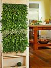 Gardening Holiday Gift Guide | Landscaping Ideas and free standing vertical wall garden