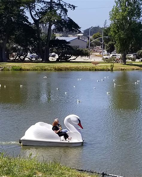 Paddle Boats El Estero Monterey Ca by 11 Family Friendly Things To Do In Monterey Happiness Is