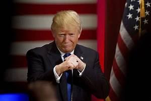 Trump: No longer fun, now just terrifying - Notes & Errata ...
