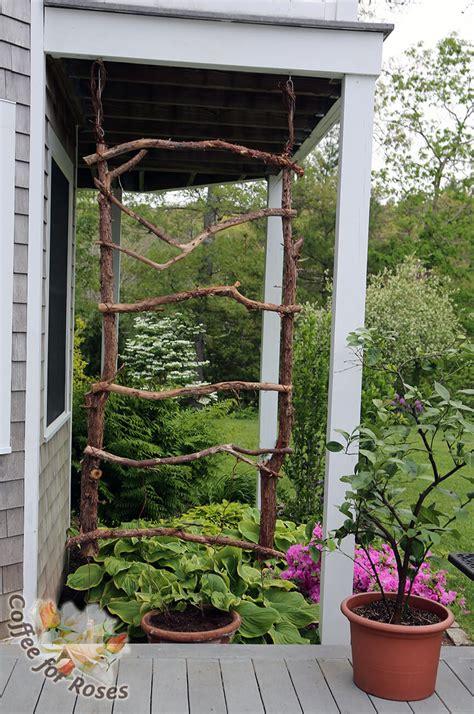 diy garden trellis projects ideas  designs