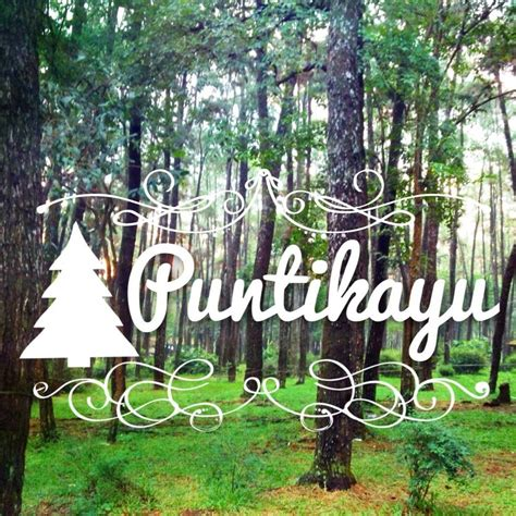 foto prewed  taman wisata alam punti kayu palembang