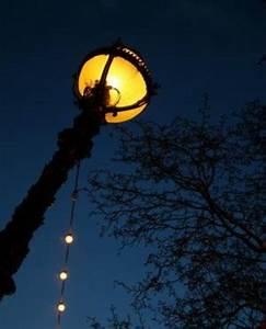 Licht In Der Laterne : unter der laterne r uberische krabbeltiere profitieren vom licht ~ Watch28wear.com Haus und Dekorationen
