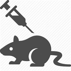 Experiment, injection, laboratory, mouse, rat, science ...