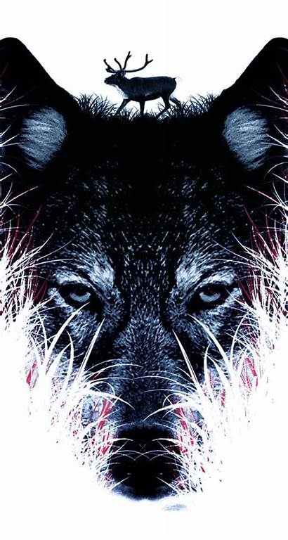 Wolf Iphone Wallpapers Phone Wolves Backgrounds Cool