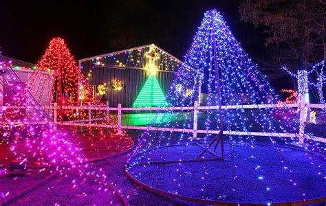 thousands of holiday lights glow during christmas magic at