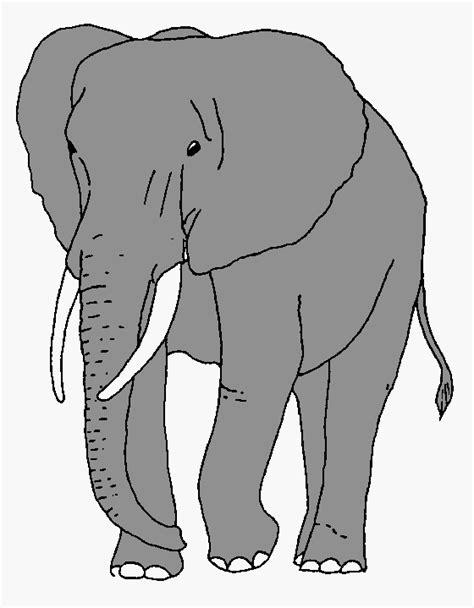 african bush elephant clipart   cliparts