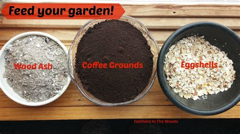 This sounds like a great idea. Feed your garden: Coffee grounds, eggshells & wood ash | Coffee grounds, Egg shells in garden ...