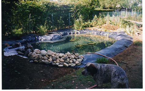decoration bassin poisson exterieur bienvenue chez jacques berthet 187 et si l on r 233 alisait un bassin