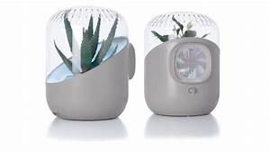 Assainir L Air De La Maison : purifier l air de la maison pour une meilleure respiration ~ Zukunftsfamilie.com Idées de Décoration