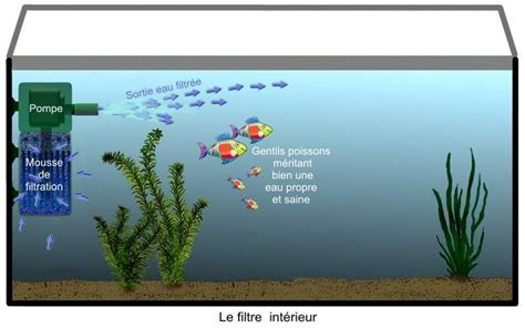 comment installer pompe aquarium principale la filtration