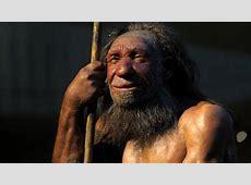 Höhle an Höhle mit den Neandertalern Wissen Hamburger