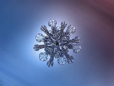 case study macro snowflake