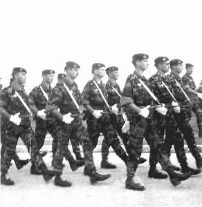 Groupement De L Occasion : groupement des commandos parachutistes de l 39 air en afn ~ Medecine-chirurgie-esthetiques.com Avis de Voitures