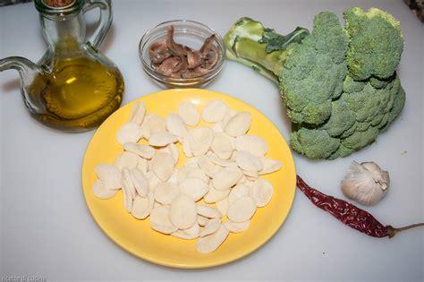 Come Cucinare Le Orecchiette Fresche by Orecchiette Con I Broccoli Ricette Di Cucina