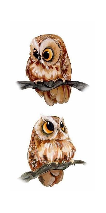 Owl Drawing Owls Drawings Eulen Zeichnen Yard