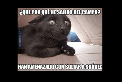 memes del barcelona  elche messi  el gato espontaneo