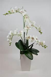 Kunstblumen Orchideen Topf : orchideen arrangement deluxe wei creme ad k nstliche ~ Whattoseeinmadrid.com Haus und Dekorationen
