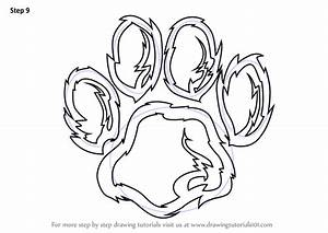 Learn How to Draw a Tiger Paw (Animals for Kids) Step by ...