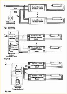 Electronic Dimming Ballast Wiring Diagram Free