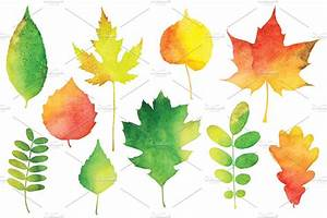 Vector Watercolor Leaves ~ Illustrations ~ Creative Market