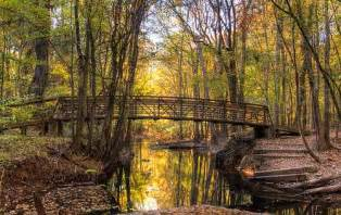 best family vacation in congaree national park minitime