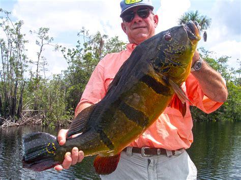 mexico brazil fishing contest fish bass el september peacock lakes salto lake month john