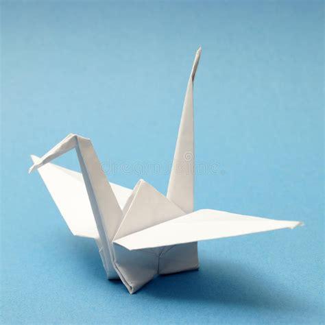 origami swan stock photo image  creativity animal