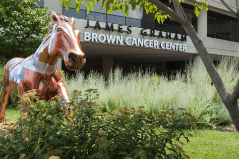 Graham Brown Cancer Center by Miller Named Ceo Of Uofl Health Uofl News