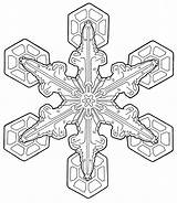 Coloring Pages Adult Adults Holiday Printable Christmas Mandala Sheets Colouring Transparent Snowflake Attractive Simple Fun Patterns Visit Advanced Downloadable Getdrawings sketch template