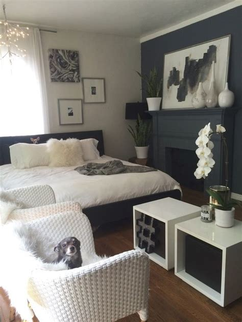 dogs  lovely room  kristys escape