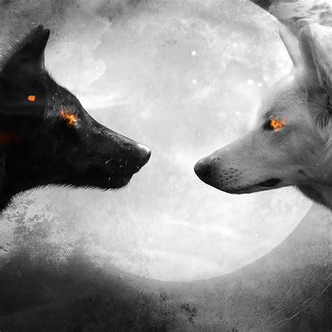 Black And White Wolf Wallpaper by Black And White Wolf Wallpaper Engine Wallpaper