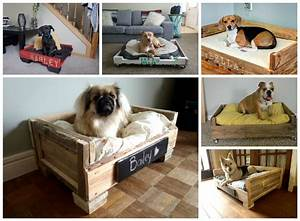 15 super cute wood pallet dog beds gift ideas creative With super cute dog beds