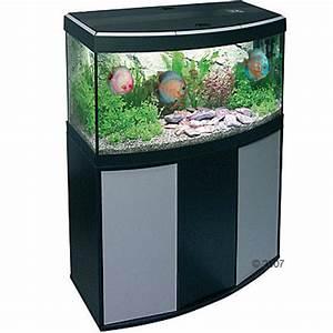 Fluval Vicenza 260 : aquariumkombination 250l gesucht mp usw aquarium forum ~ Orissabook.com Haus und Dekorationen