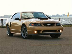 GoldStang2k's 2000 Ford Mustang in Toronto, ON